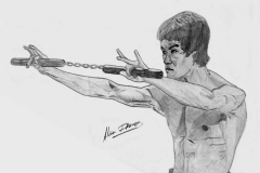 Bruce Lee: Enter the Dragon