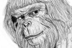 Dr. Zaius from The Planet of the Apes